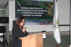 National Consultation on the Draft Guidelines on DA Procurement on Agri-Fishery Machinery